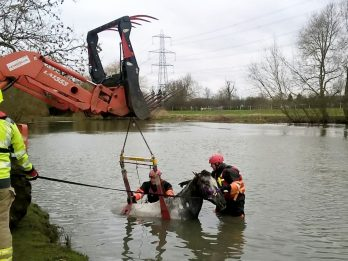 Firefighters Rescue Stranded Horse From Icy River By Winching It To Safety