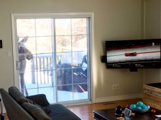 Good Sport: Moose Peered Through Man's Window To Watch Canada Take Gold Medal In Winter Olympics