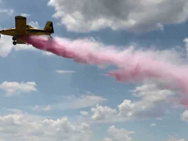Couple Discover The Sex Of Unborn Baby During Elaborate Airplane 'Gender Reveal' Stunt