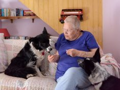 Pensioner Trapped In Woods Hailed Her Own 'Lassie' Dog A Life-Saving Hero For Rescuing Her