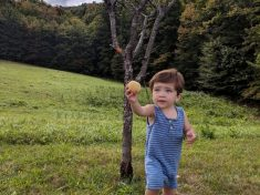 Man Who Bought Peach Tree For College Sweetheart Captures The Moment Their Son Ate First Peach From It – Nine Years Later