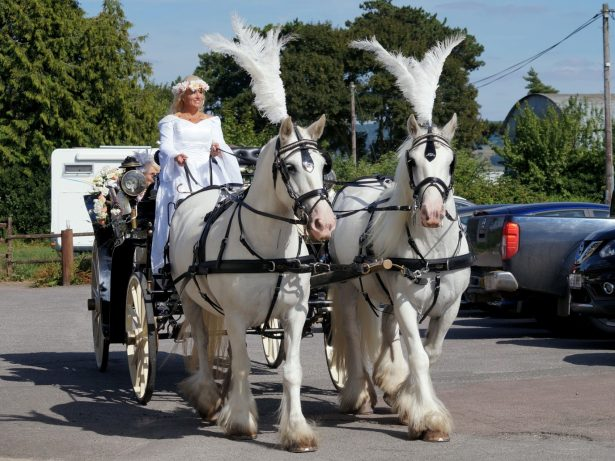 Bride Rode HORSE To Her Own Reception - Still Wearing Her Wedding Gown