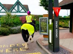 Bizarre Pictures Show Horse Rider Taking Her Steed To McDonald's Drive-Thru