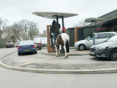 Hilarious Moment Man Tries To Ride HORSE Through McDonald's Drive-Thru – Before Being Told 'Neigh'