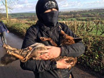 Violence Breaks Out After Discovery Of Dead Fox During New Year's Day Hunt