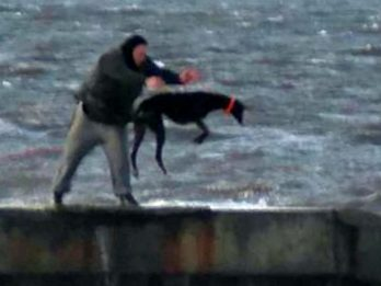 RSPCA Launch Appeal After Shocking Pictures Emerge Of Man Throwing Terrified Dog Into Freezing Sea