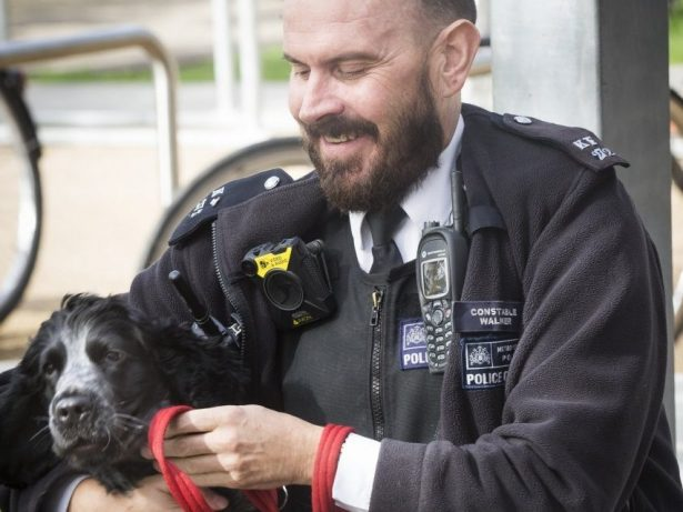 Stressed-Out Coppers Are Getting Psychological Support - By Cuddling PUPPIES