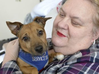 Former Army Nurse 'Thrown Out Of ASDA' For Taking Assistance Dog Inside